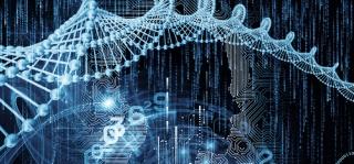 genes on human traits