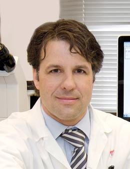 Dr. Lorenzo Ferri cropped