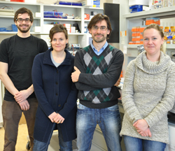 Left to right: Stephen P. Methot, Astrid Zahn, Javier M. Di Noia, Anne-Marie Patenaude