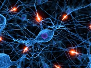 neurons2_0