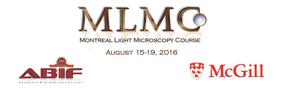 MLMC course