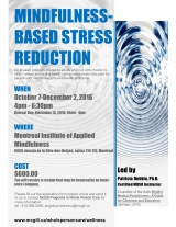Mindfulness-Based Stress Reduction Program Eng