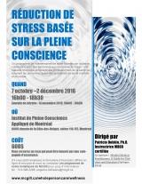 Mindfulness-Based Stress Reduction Program Fr